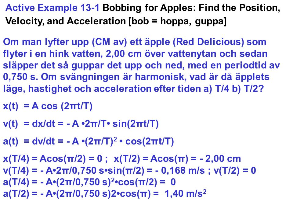 Active Example 13-1 Bobbing for Apples: Find the Position, Velocity, and Acceleration [bob = hoppa, guppa]
